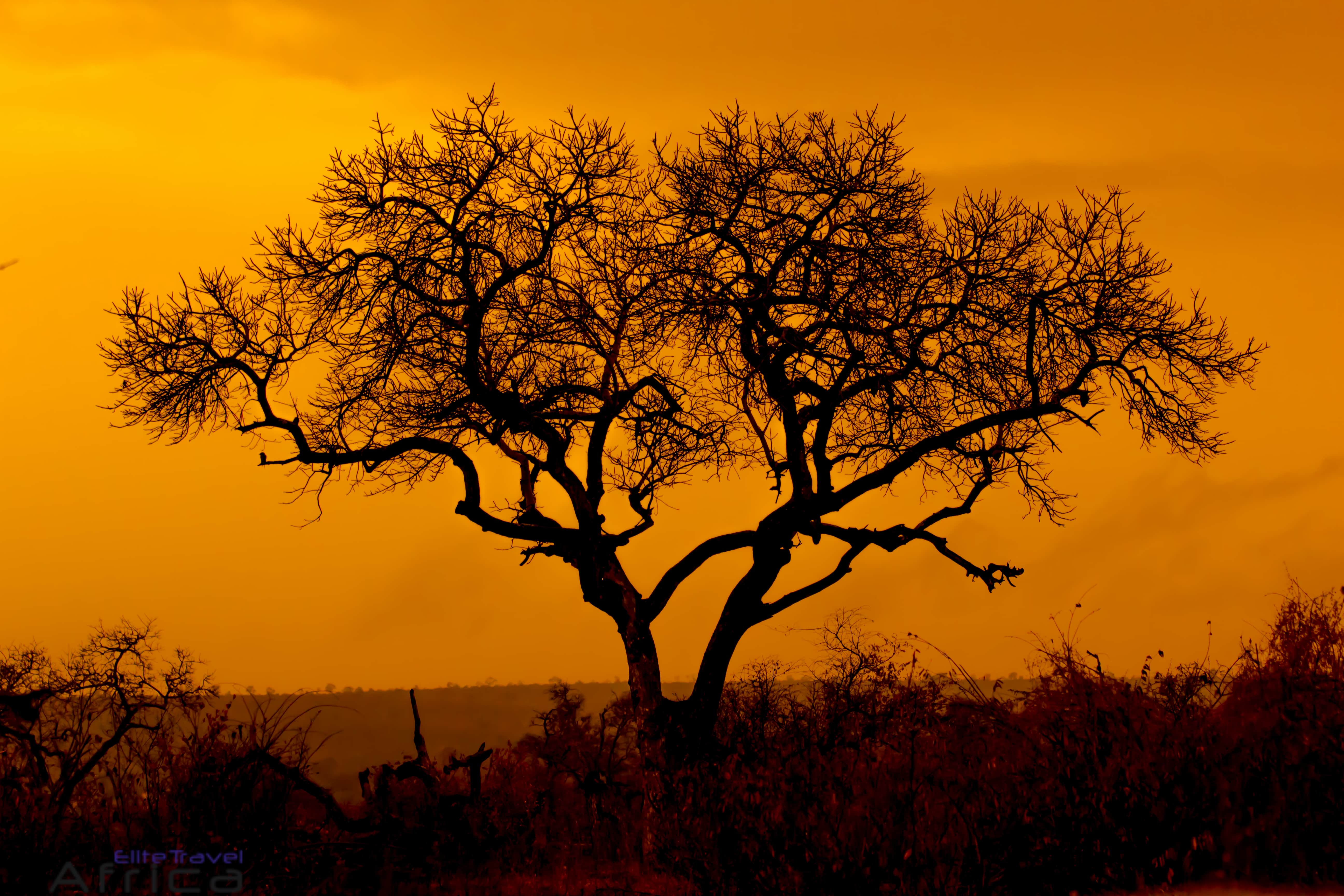 12 Day South Africa – Explore Cape Town, Garden Route & Kruger ...